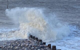 Moody seas and Autumn scenes at Chichester Care and Residential Home